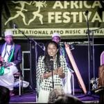 7. Africa Festival Würzburg | 2015 | Eröffnung | Award
