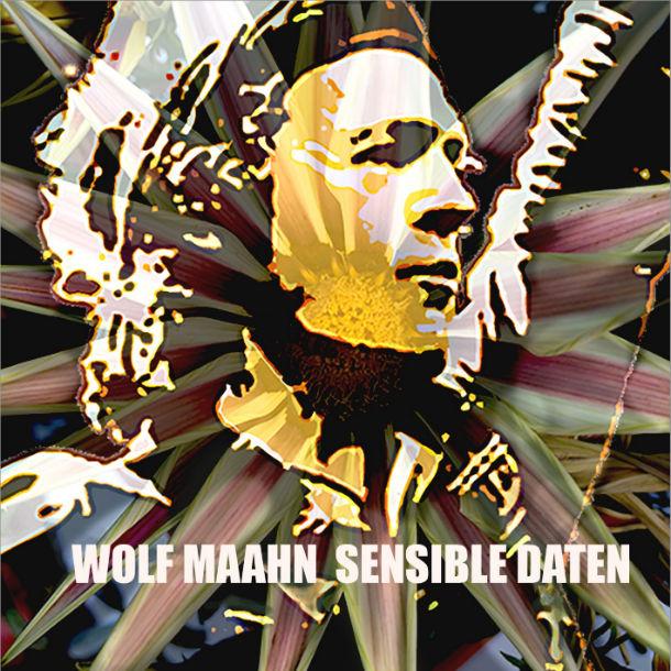 Wolf Maahn - Sensible Daten (2015) - Cover