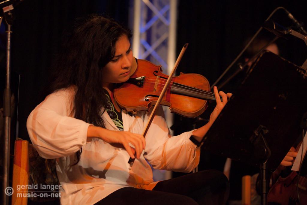 Wuerzburg Art Ensemble - Jazzfestival Wuerzburg 2014 @ Gerald Langer