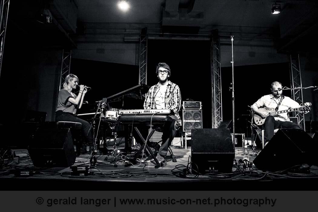 Trio Drei - Jazzfestival Wuerzburg 2013 © Gerald Langer