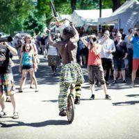 20170527-Impressionen-Africa-Festival-Wuerzburg-2017-©-Gerald-Langer_20_IMG_9612